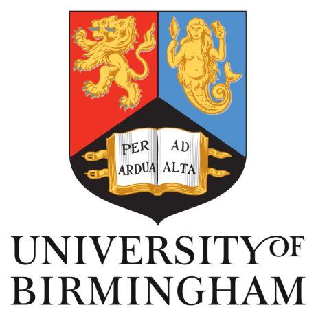 bham uni thesis